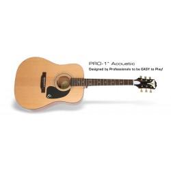 Chitara acustica Epiphone PRO-1