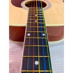 Chitara acustica Freedom AG-300 NT cu Corzi Colorate