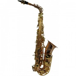 Saxofon Alto Flame Pro 1012
